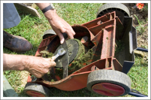 Rotary lawnmower blade